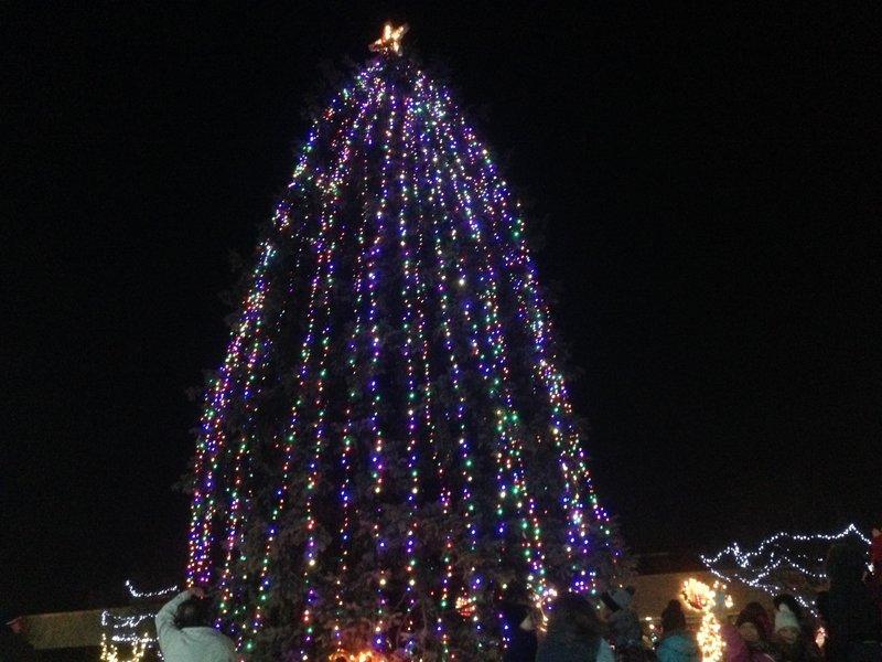 Roseville Tree Lighting