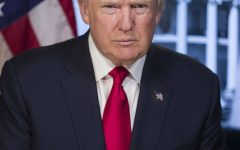 President Donald Trump first 100 days