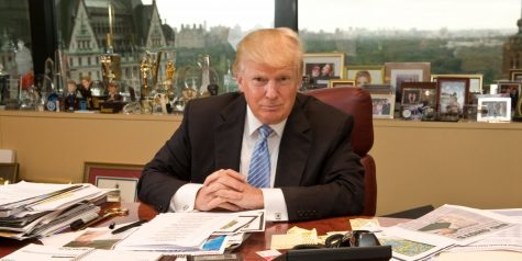 Donald trump in his office posing for a picture.