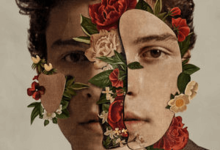 Shawn Mendes the Album Review