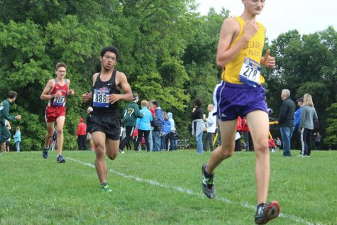 Cross Country goes to division championships